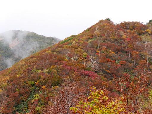 奥に奈良岳