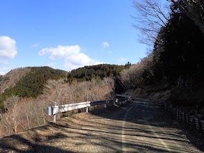天狗岳へは林道を進む