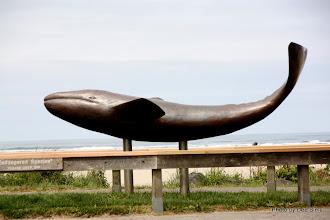 Photo: (Year 2) Day 347 - Cannon Beach #2