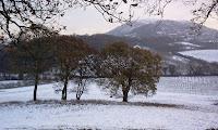 Photo: Malvern Hills in winter