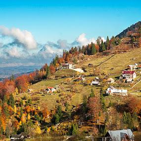 by Nedelcu Valeriu - Landscapes Travel ( mood factory, color, lighting, moods, colorful, light, bulbs, mood-lites )