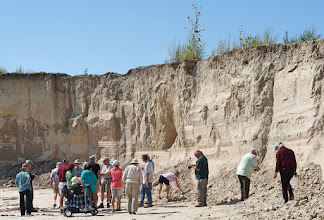 Photo: Loess is an aeolian sediment formed by the accumulation of wind-blown silt, typically in the 20–50 micrometer size range, twenty percent or less clay and the balance equal parts sand and silt that are loosely cemented by calcium carbonate. It is usually homogeneous and highly porous and is traversed by vertical capillaries that permit the sediment to fracture and form vertical bluffs.