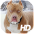 Pitbull Wallpaper HD file APK for Gaming PC/PS3/PS4 Smart TV