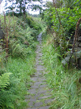 Photo: The Pennine Way near Higher Underbank Farm