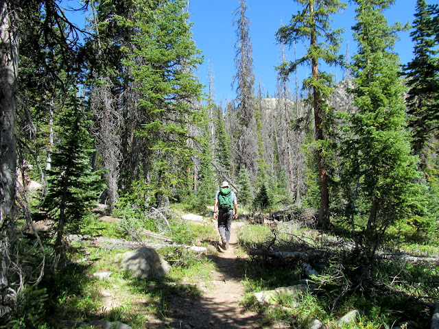 Big Elk Lake trail