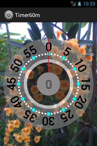 Timer - 60 minutes
