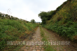 Photo: Hohlweg in den Alsheimer Weinbergen
