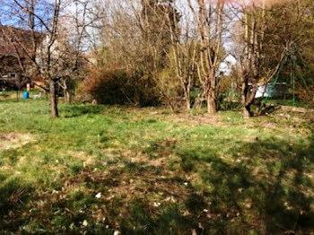 terrain à Guewenheim (68)