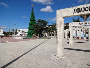 Photo: jou, vánoční strom nesmí chybět
