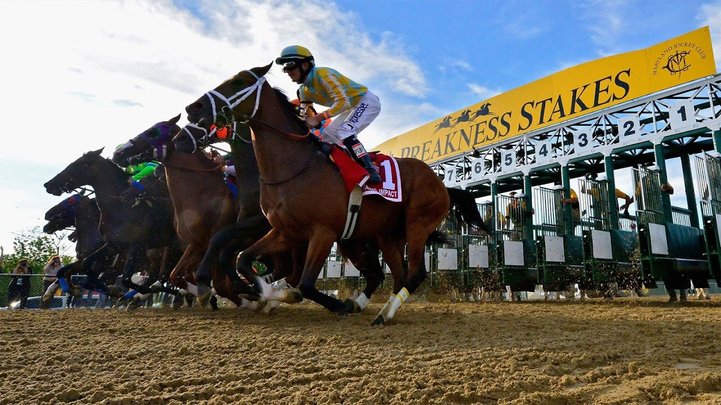 Watch Preakness Stakes Prep live