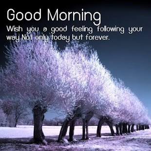 Dobré ráno pozdravy - náhled