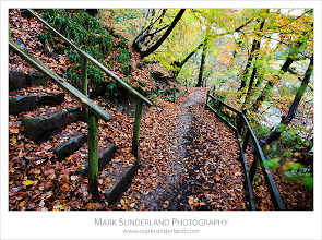 Photo: Footpath through Brundholme Woods  Here's a first shot from the shoot around Keswick in the Lake District last week. Brundholme Woods along the River Greta from Keswick heading to Threlkeld were looking nicely autumnal and an easy walk from Keswick after the drive up.  Canon EOS 5D MkII,EF17-40mm f/4L USM at 20mm, ISO 100, 10s at f16