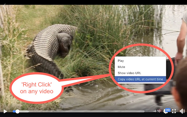 How to Download Facebook Videos Step 1