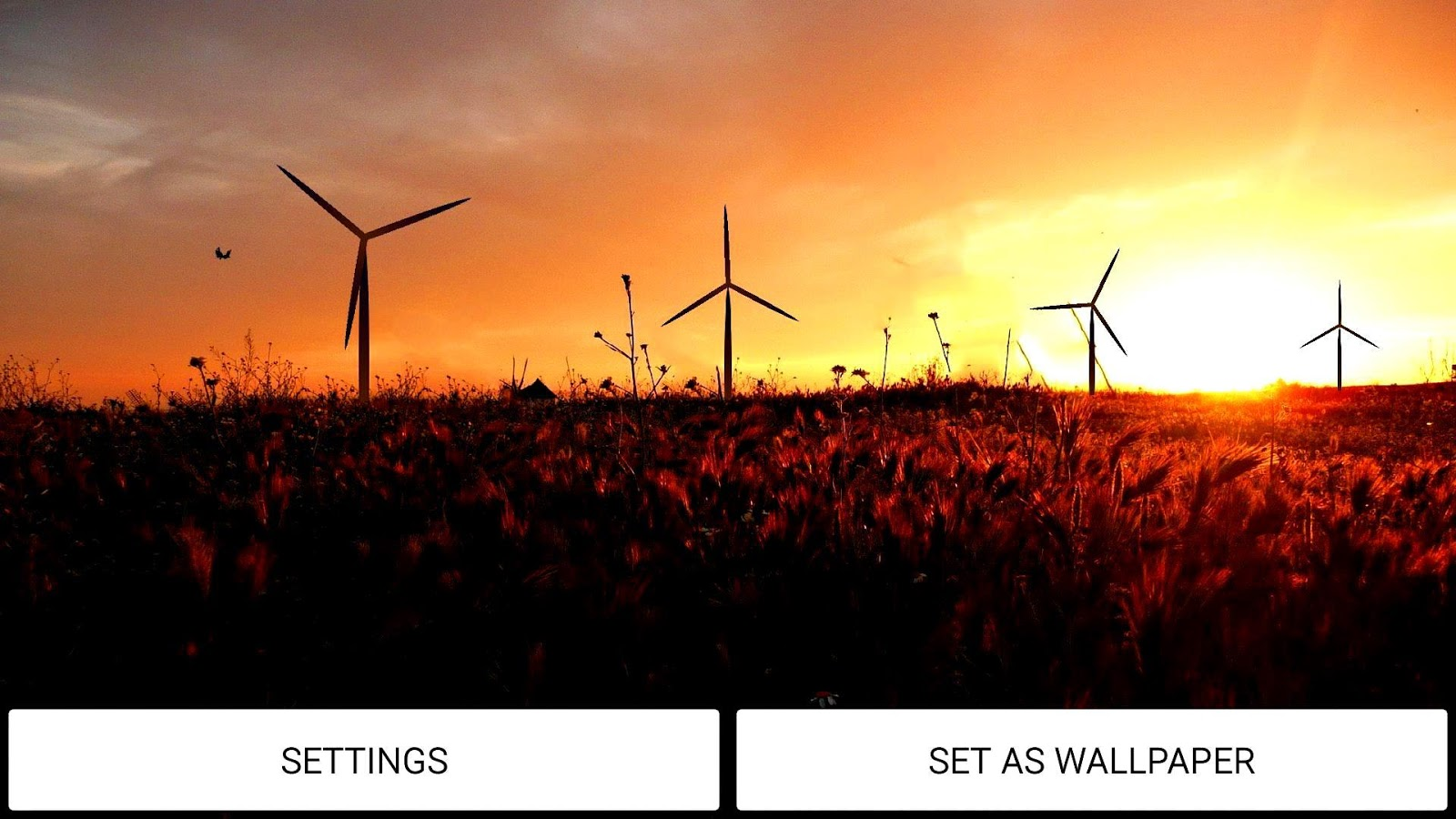 windmill live wallpaper android apps on google play