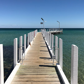 pier at beach by Donna Racheal - Buildings & Architecture Bridges & Suspended Structures ( center, wooden, white, pier, beach, middle,  )