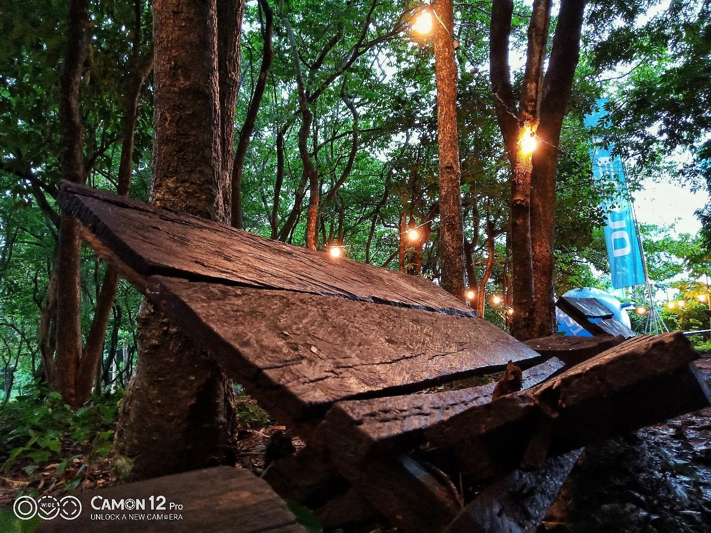 C:\Users\user\Desktop\Camping pictures on Camon 12\Low light.jpg