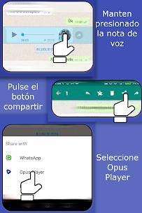 Opus Player - WhatsApp Audio Buscar y Organizar