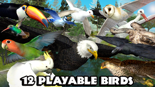Ultimate Bird Simulator screenshot 7