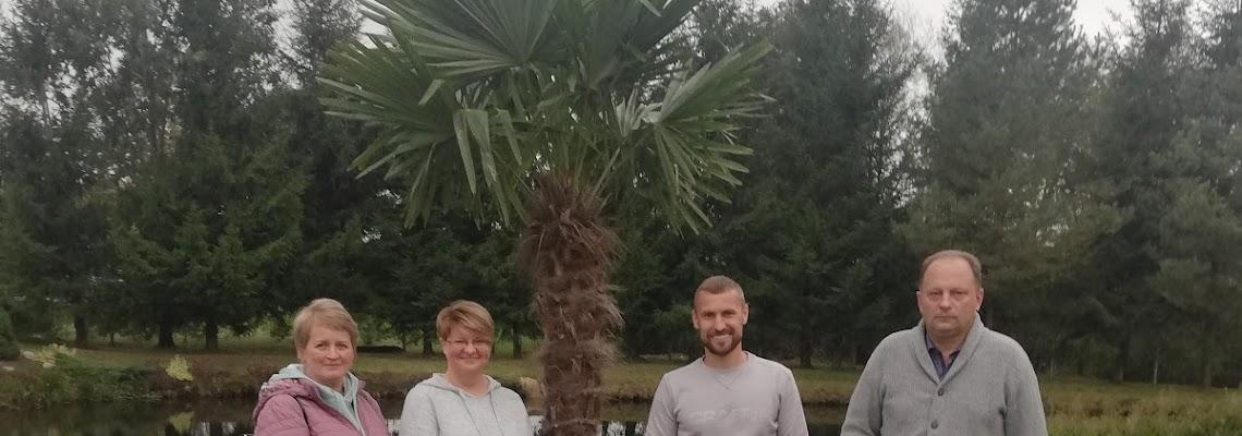 palmes-sode-epmc