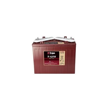 Batteri Trojan 12V/150Ah