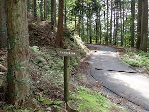 入口の道標