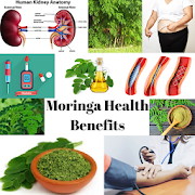 MORINGA HEALTH BENEFITS - THE MIRACLE TREE