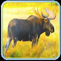 Moose Call Sound icon