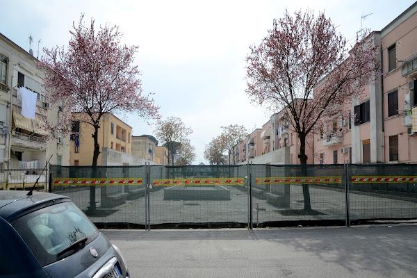 uno sguardo al di là della recinzione di Lucia Maio