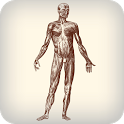 Daily Amazing Human Body Facts icon