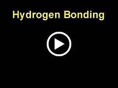 Video: พันธะไฮโดรเจนของน้ำ (0.9 MB)