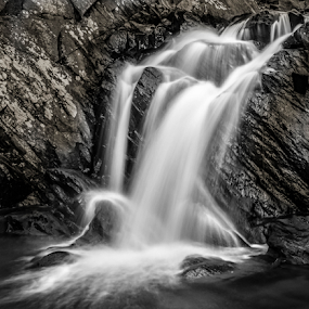 Scott's Run Falls by Dale Youngkin - Black & White Landscapes ( blackandwhite, waterfalls, nature, black and white, falls, waterfall,  )