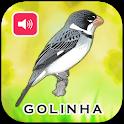 Canto De Golinha HD icon