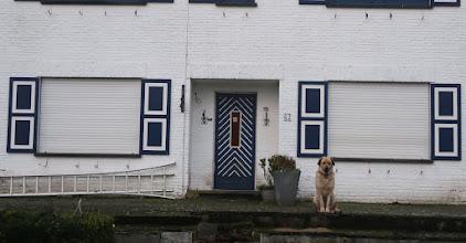 Photo: Le chien, ce n'est pas une statue !