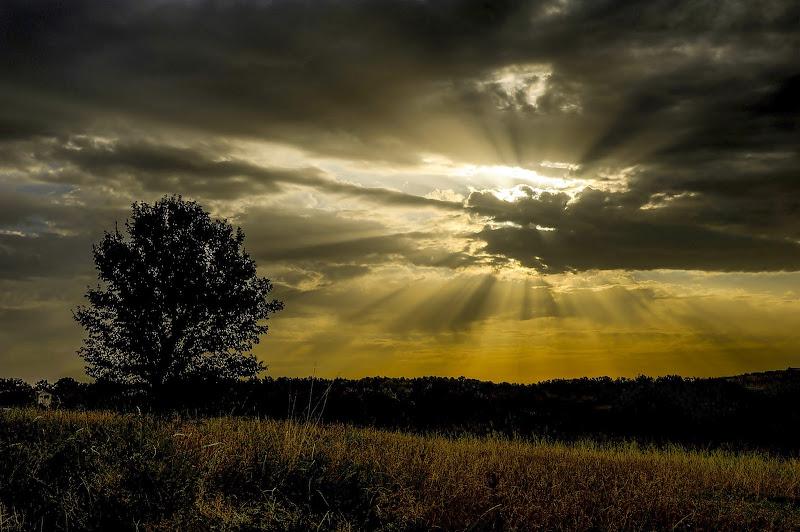 luce tra le nuvole di artu
