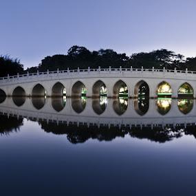 13 Arch Chinese Garden Bridge by Chester Chen - Buildings & Architecture Bridges & Suspended Structures ( 13 arch, bridge, garden, singapore, chinese )