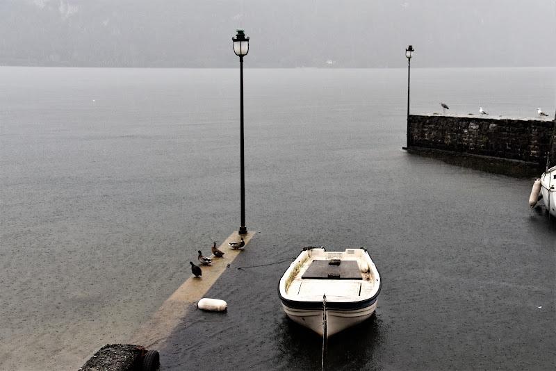 Il lago sotto la pioggia di laura62