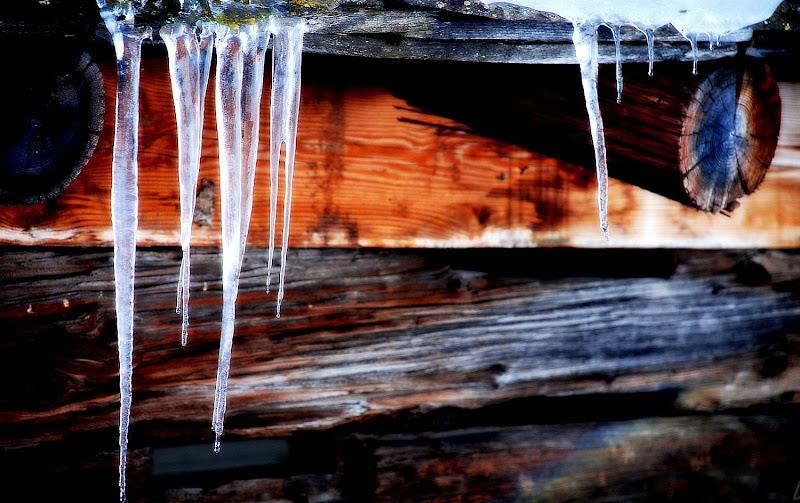Ghiaccio ghiaccio di Luciano Fontebasso