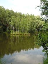 Photo: C6080038 Obora - Arboretum Bramy Morawskiej