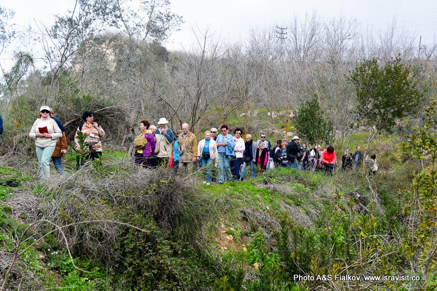 Гид в Израиле Светлана Фиалкова. Экскурсия по заповеднику ручей Аюн. Север Израиля.