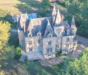 château à Luçay-le-Libre (36)