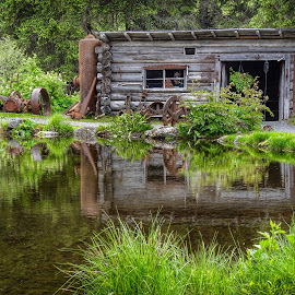 A Building At The Mine by Patricia Phillips - Buildings & Architecture Public & Historical ( alaska goldmines crow creek girdwood )