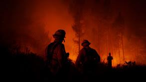 Back in the Dark; California Burning thumbnail
