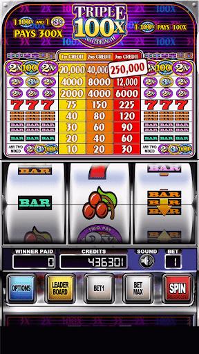 Double Wild Slots