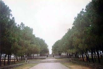 Photo: đàn Nam Giao - chính diện