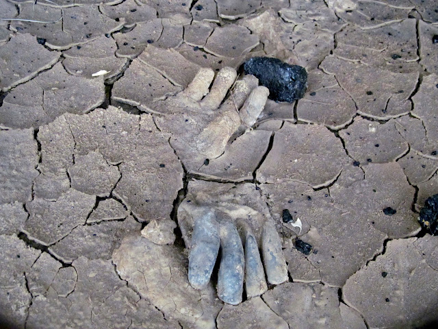 Gloves in dried mud