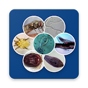 App Icon for Sheep Parasites App in Czech Republic Google Play Store