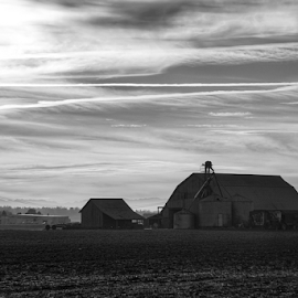 Barns of Skagit Valley  by Todd Reynolds - Black & White Buildings & Architecture