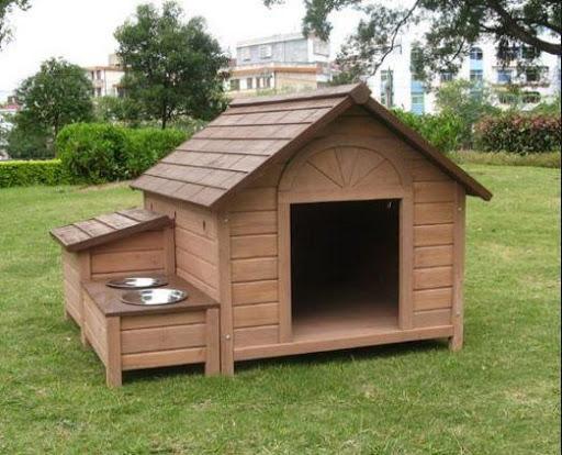 애완 동물 집 디자인 아이디어,生活-iTune&Google play APP熱門排行榜