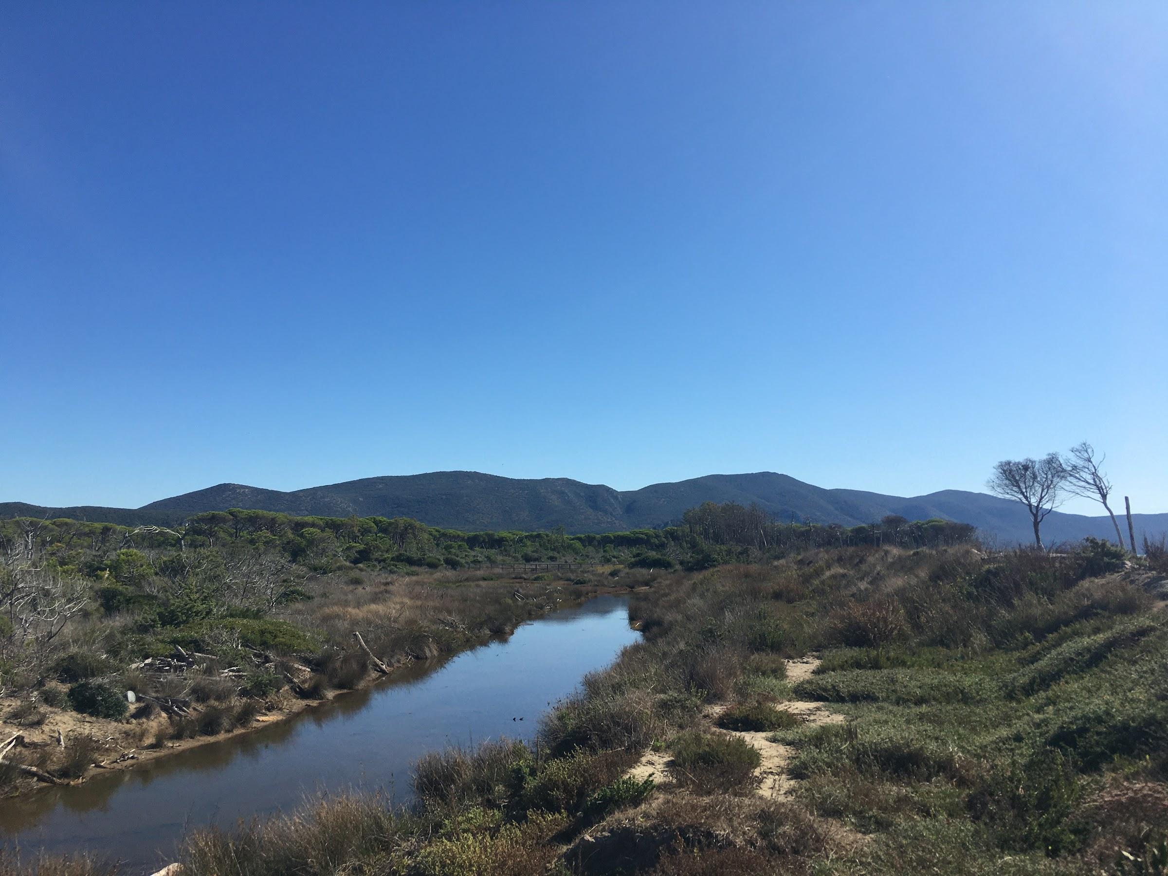 Canale di drenaggio Padule del Saline, Parco naturale della Maremma