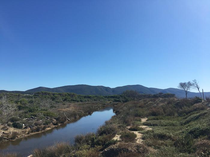 Parco Naturale delle Maremma, canale idraulico